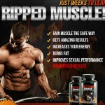 Maximum Shred – Now Everyone Can Build More Muscle Mass