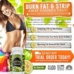 Garcinia Cambogia Pure Extract And How It Works